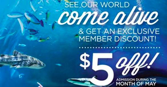 Living Planet Aquarium Coupon